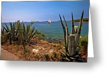 Sailing Waterfront Of Prvic Island View Greeting Card