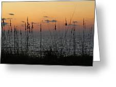 Sailors Delight Greeting Card