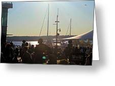 Sails And Sunsets Greeting Card