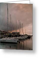 Sails In Pink Greeting Card