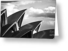 Sails Of Sydney Opera House Greeting Card