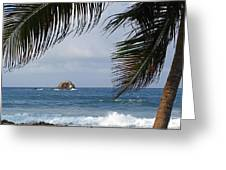 Saint Lucia Palm Tree Small Rock Caribbean Flowing Greeting Card
