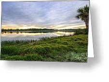 Saint Lucie Nature  Greeting Card