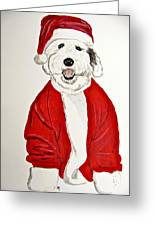 Saint Nick Greeting Card
