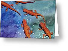 Salamanders Greeting Card