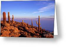 Salar De Uyuni And Cacti At Sunrise Greeting Card