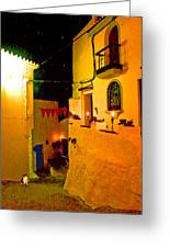 Salares By Night With Cat Greeting Card