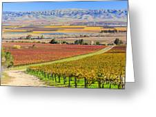 Salinas Valley Greeting Card