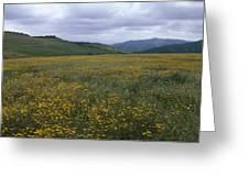 Salisbury Potrero - Sierra Madre Mountains Greeting Card