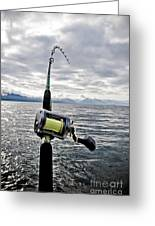 Salmon Fishing Rod Greeting Card by Darcy Michaelchuk