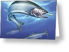 Salmon Painting Greeting Card