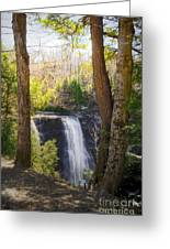 Salmon River Falls Greeting Card