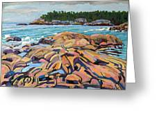 Salmon Rocks Greeting Card