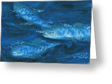 Salmon Swimming Greeting Card