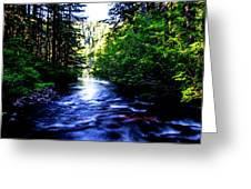 Salt Creek Falls Greeting Card