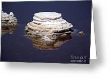 salt cristal at the Dead Sea Israel  Greeting Card