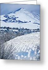 Salt Lake City Tabernacle In Snow Greeting Card