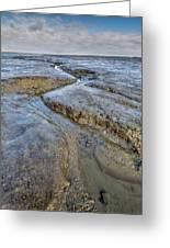 Saltings Channel Greeting Card