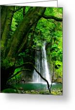 Salto Do Prego Waterfall Greeting Card