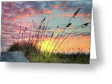 Salty Breeze On The Dunes Greeting Card