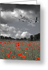 Salute To The Brave - P51 Flying Over Poppy Field Greeting Card