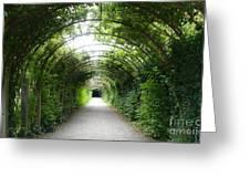 Salzburg Garden Arbor Greeting Card