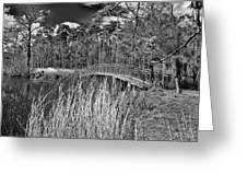 Sam Houston Jones State Park Bridge Bw Greeting Card