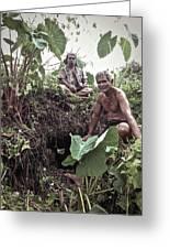Samoan Planters Greeting Card