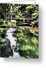 San Antonio River Scenic Greeting Card