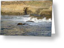 San Diego 10 Greeting Card
