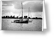 San Diego Bay Sailboats Greeting Card