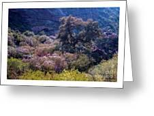 San Diego County Canyon Greeting Card