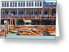 San Francisco Pier 39 Sea Lions . 7d14272 Greeting Card by Wingsdomain Art and Photography