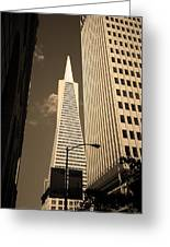 San Francisco - Transamerica Pyramid Sepia Greeting Card
