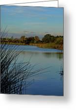 San Joaquin Wildlife Sanctuary Greeting Card