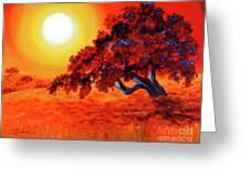 San Mateo Oak In Bright Sunset Greeting Card