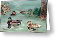 Sanctuary For Ducks Greeting Card