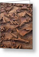 Sand And Mud Curls Greeting Card