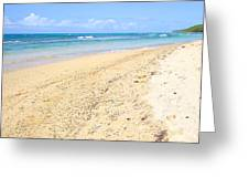 Sand And Turquoise In Vieques Greeting Card