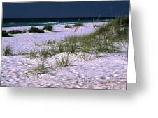 Sand Beach And Grass Greeting Card