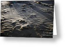 Sand Beach At Sunset Greeting Card
