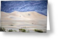Sand Desert Usa Greeting Card