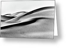 Sand Dunes Black And White Greeting Card