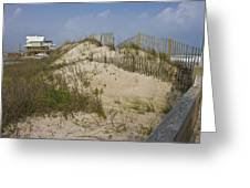 Sand Dunes II Greeting Card by Betsy C  Knapp