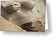 Sand Spirits Greeting Card