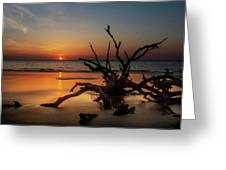 Sand Surf And Driftwood Greeting Card