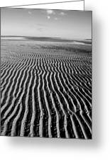 Sandbar Patterns Greeting Card