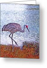 Sandhill Crane Stroll Painted Greeting Card