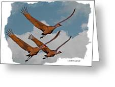 Sandhill Cranes 3 Greeting Card