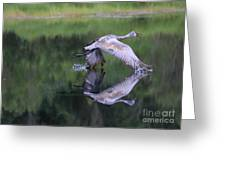 Sandhill Retreat Greeting Card